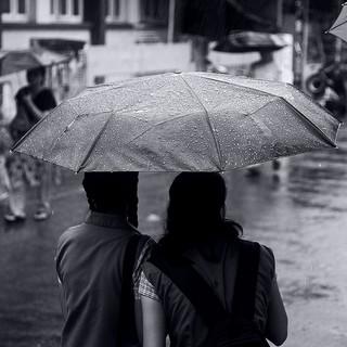 Paraply i regn